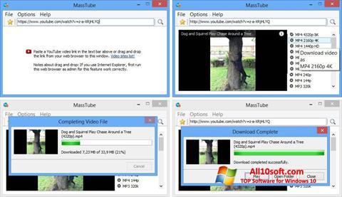 स्क्रीनशॉट MassTube Windows 10