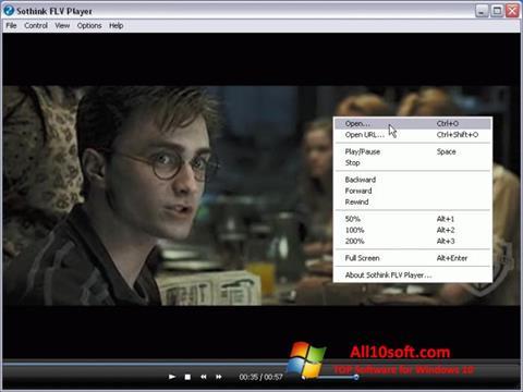 स्क्रीनशॉट FLV Player Windows 10