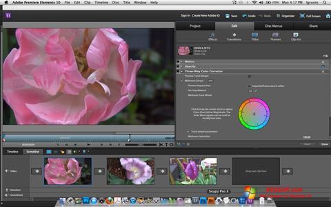 स्क्रीनशॉट Adobe Premiere Elements Windows 10