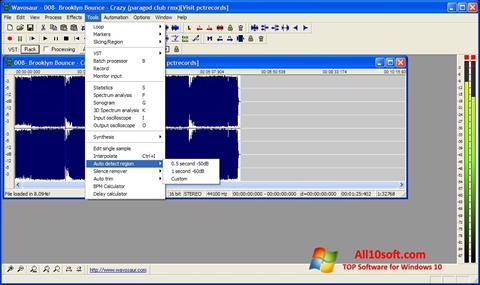 स्क्रीनशॉट Wavosaur Windows 10