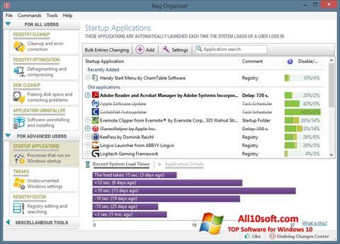 स्क्रीनशॉट Reg Organizer Windows 10